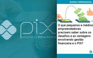 O Que Pequenos E Médios Empreendedores Precisam Saber Sobre Os Desafios E As Vantagens Envolvendo Gestão Financeira E O Pix Organização Contábil Lawini - Thargo Contabilidade